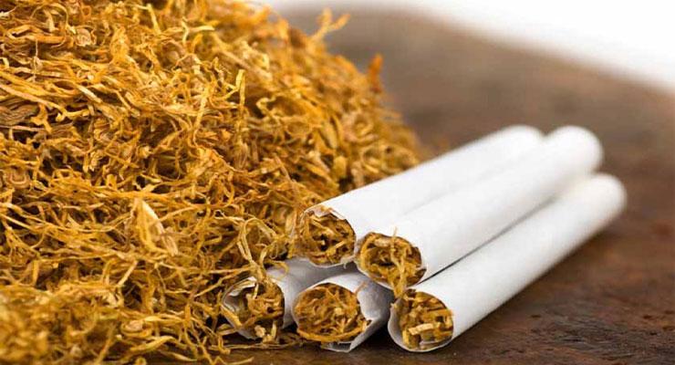 Gunakan Tembakau